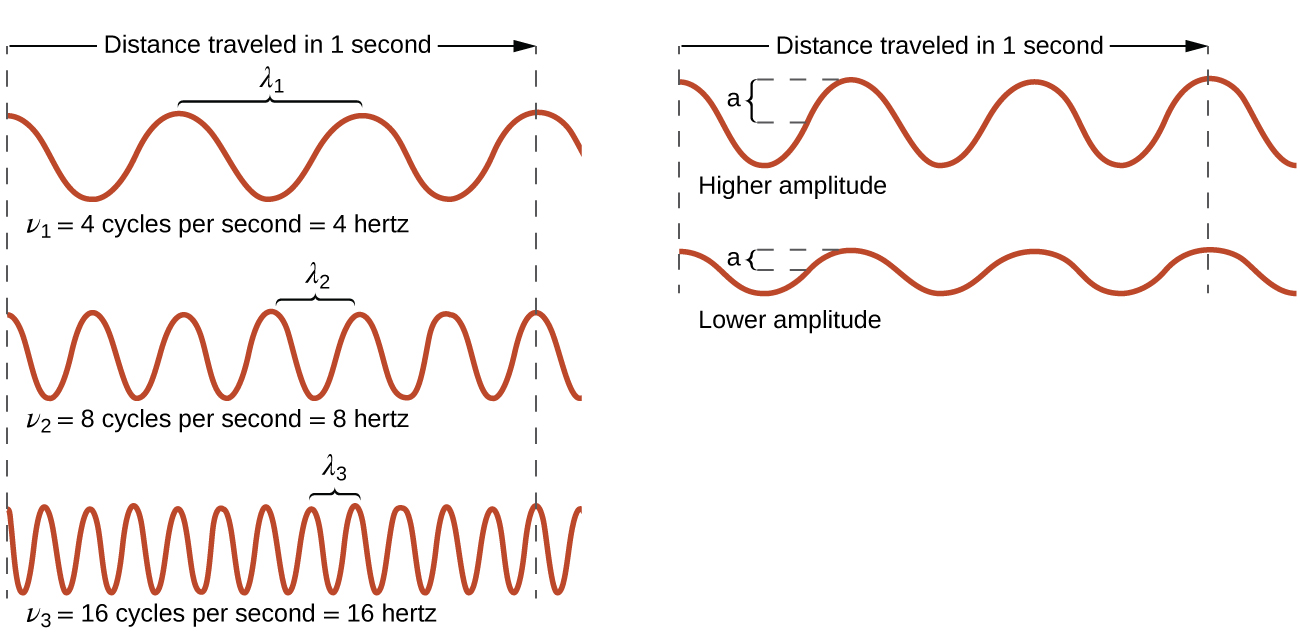 identify the relationship between wave frequency velocity and wavelength